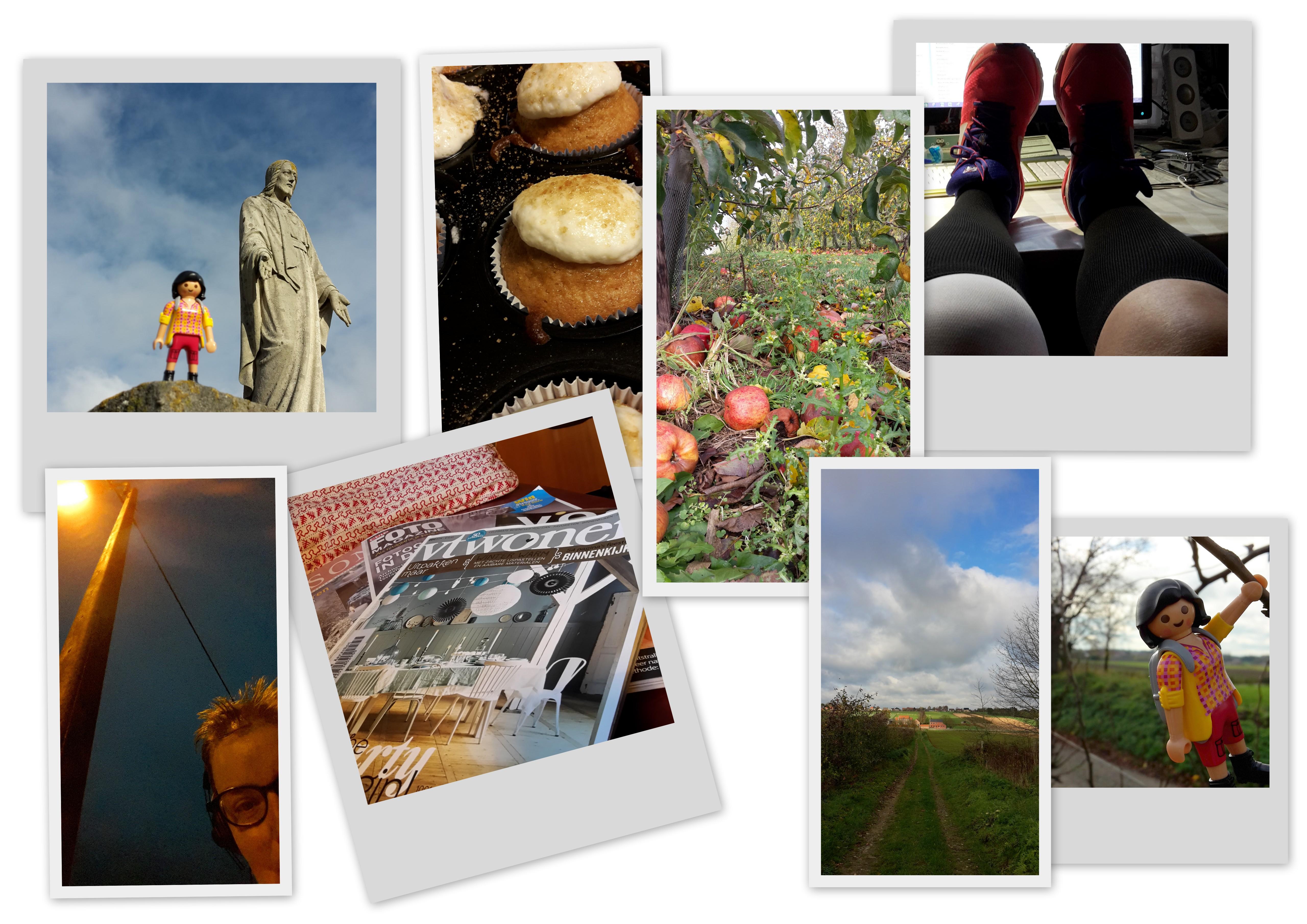 2015 week 47 fotos large